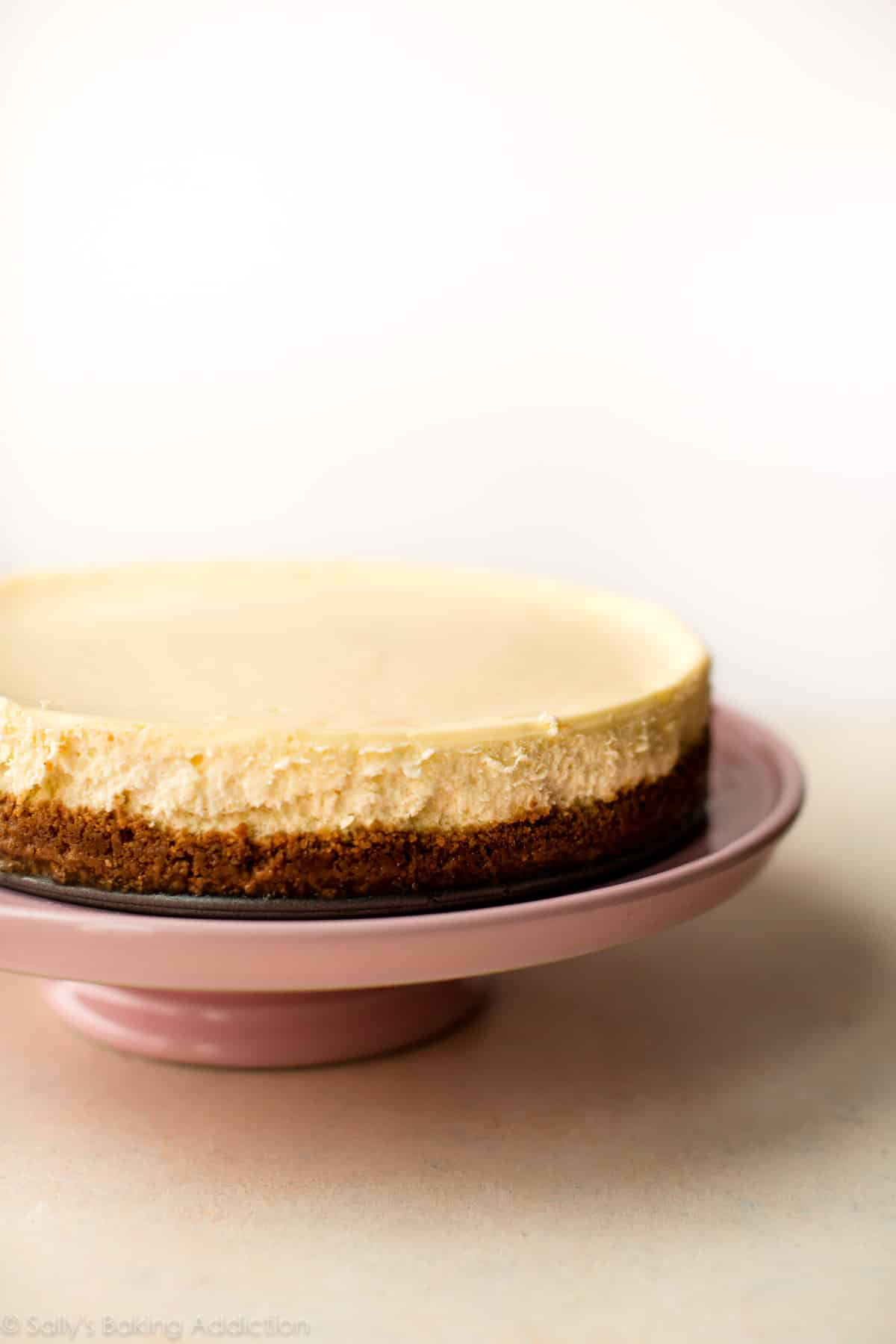 Look no further for a creamy and smooth classic cheesecake recipe! Paired with a buttery graham cracker crust, no one can deny its simple decadence! Recipe on sallysbakingaddiction.com