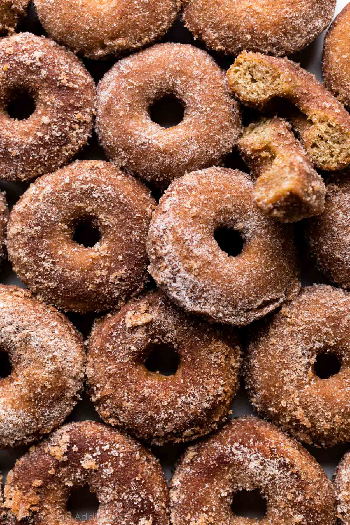 Baked apple cider donuts coated in buttery apple cinnamon spice! Easy and quick baked donuts recipe on sallysbakingaddiction.com